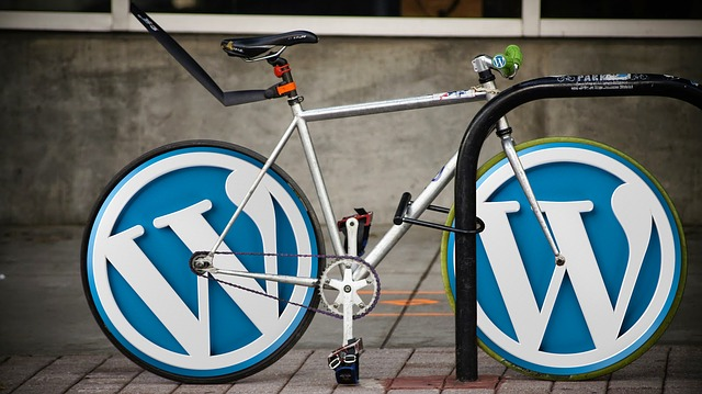 WordPress installeren met deze handleiding